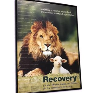 Lion and Lamb Recovery Poster